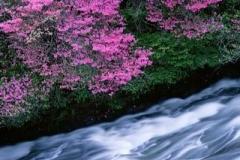 Серия R: Водопады